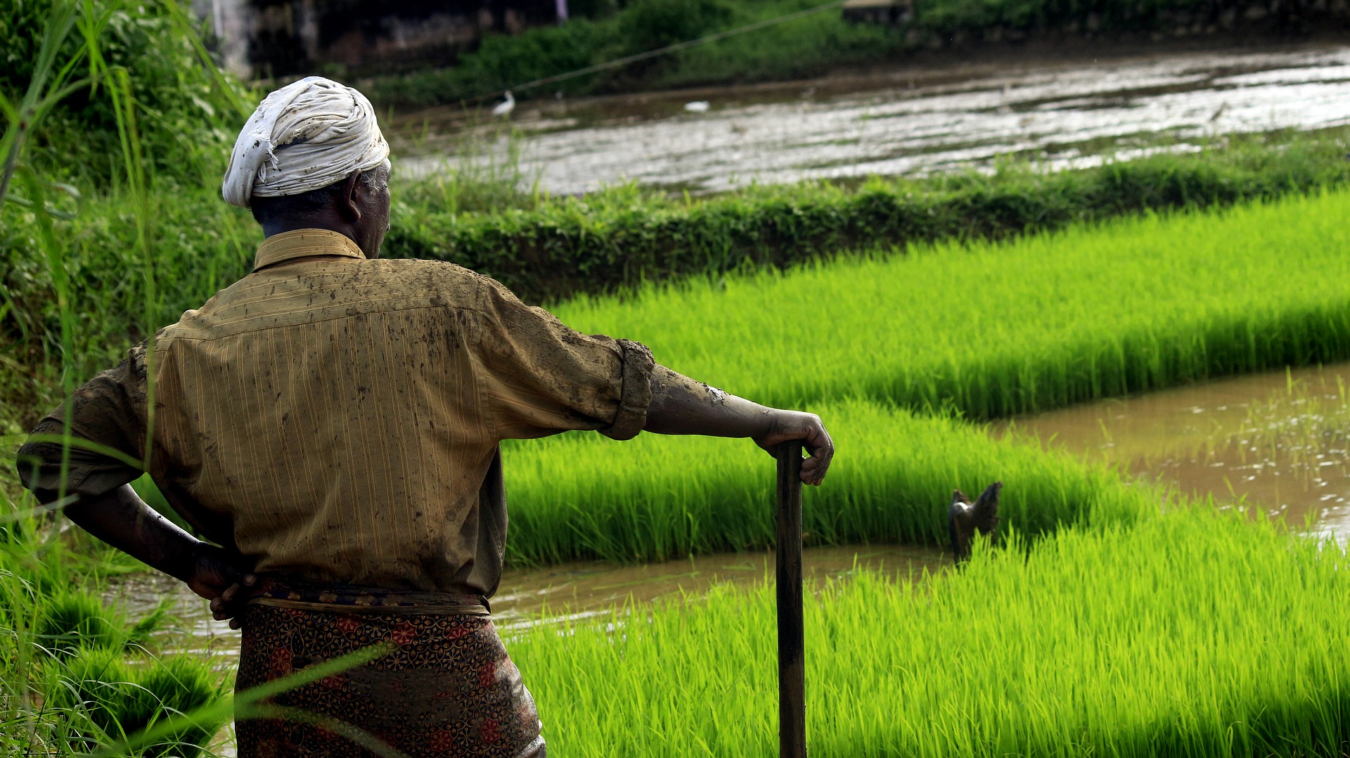Breaking the Agri Barriers